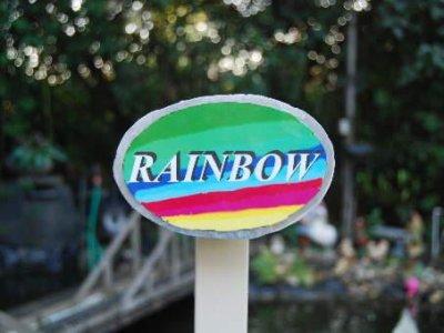 0072 Rainbow 10.JPG
