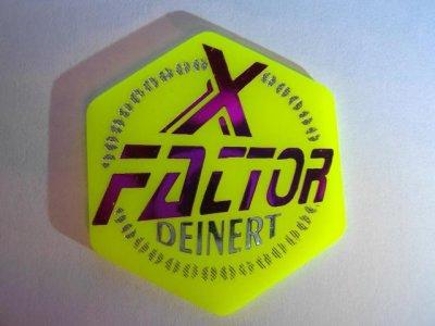 ai182.photobucket.com_albums_x168_Reyzer666_Fahrchips_XFactor_Deinert_F.jpg