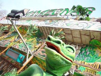 ai275.photobucket.com_albums_jj289_ThunderNrw_Amazonas_ama6.jpg