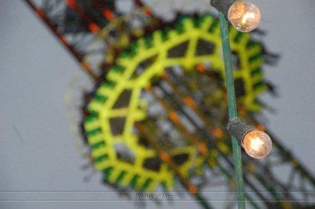 ai471.photobucket.com_albums_rr76_wesleyspies2009_duren2010_DSC_0272.jpg