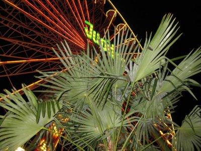 ai661.photobucket.com_albums_uu337_Dominik451981_IMG_1038.jpg