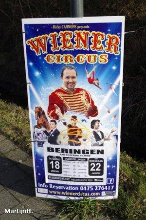 wiener-20-3.jpg